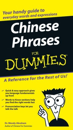 chinese-phrases-for-dummies