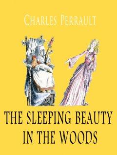 the-sleeping-beauty-in-the-woods