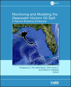 monitoring-and-modeling-the-deepwater-horizon-oil