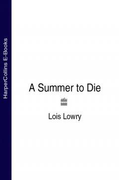 a-summer-to-die