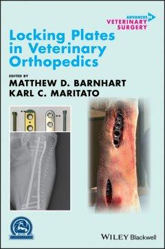 locking-plates-in-veterinary-orthopedics
