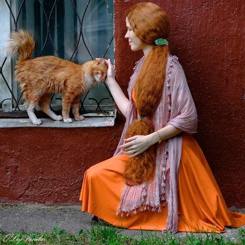 Рыжая, теплая кошка