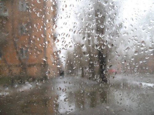 Промокший день