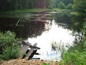 Воспоминание. Рыбалка