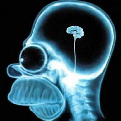 Засохший мозг (прочитала)