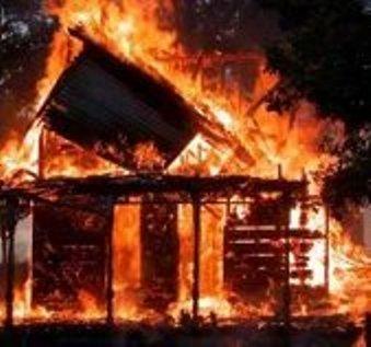 Лес загорелся… через сутки…