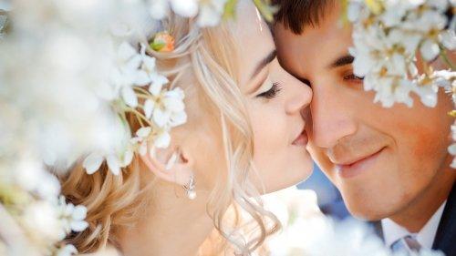 Ты, только подари мне поцелуй