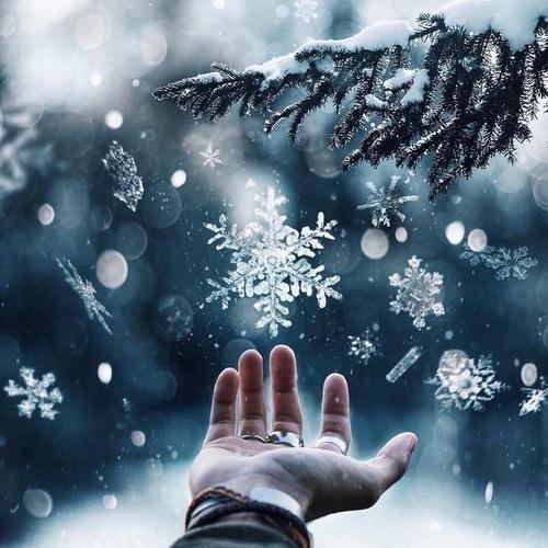 Снежинки тихо шелестят