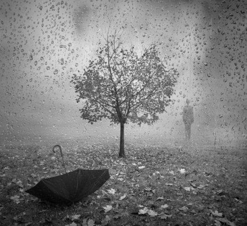 Гуляет в дождь