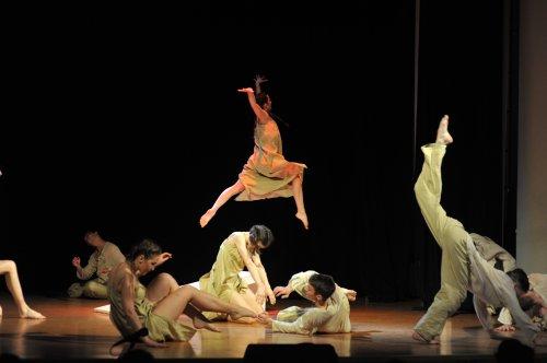Балетный спектакль как феномен культуры, мысль Юнга