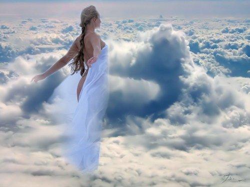 Ветер южный дает крыльям силы полет