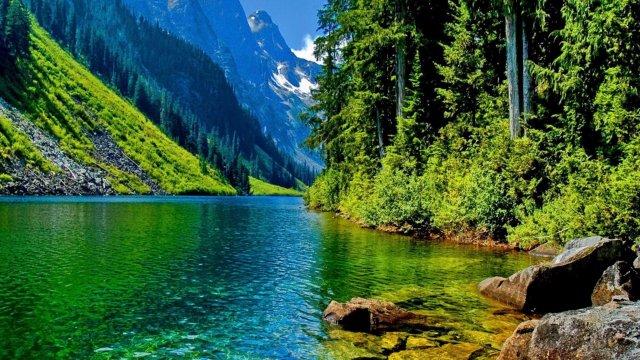 Река воспоминаний лучших дней