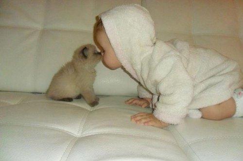 Младенец - венец творений