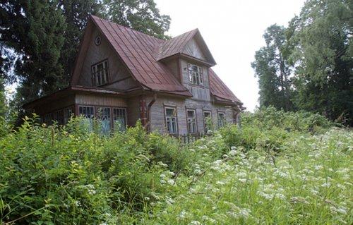 Дом в зарослях цикуты…