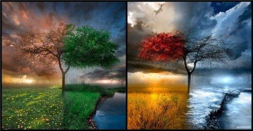 Круговорот природы