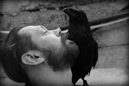 Поэт и ворона
