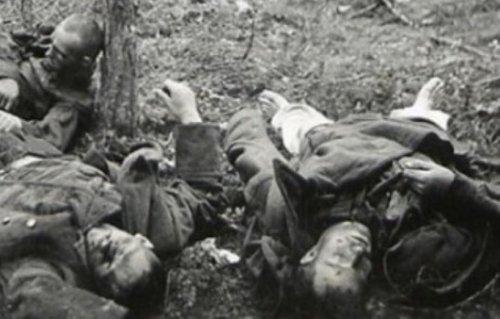 На скрипке войны год трагический, первый!..