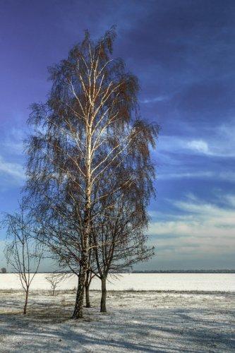 Зимы эротика