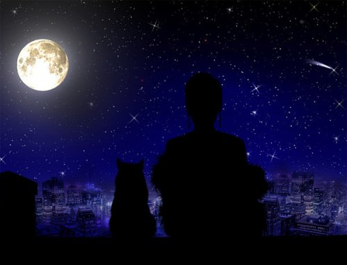 Красотами полон ночной вернисаж