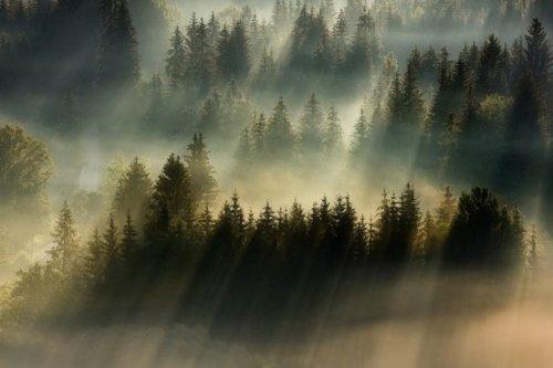 Небесная прачечная… (16.11.2020 г)